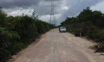 Foto de terreno habitacional en venta en  , puerto morelos, benito juárez, quintana roo, 11264065 No. 01