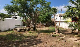 Foto de terreno habitacional en venta en puerto morelos , playa del carmen centro, solidaridad, quintana roo, 0 No. 01
