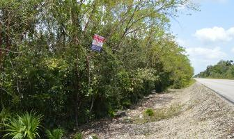 Foto de terreno habitacional en venta en puerto morelos , puerto morelos, benito juárez, quintana roo, 0 No. 01