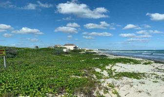 Foto de terreno habitacional en venta en  , puerto morelos, puerto morelos, quintana roo, 0 No. 01