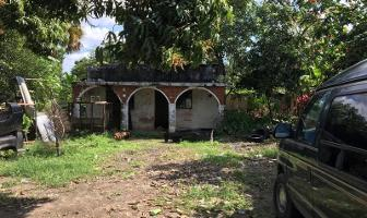 Foto de terreno habitacional en venta en r/a guineo 1ra seccion #s/n, rio viejo, centro , buena vista río nuevo 2a sección, centro, tabasco, 9205897 No. 01