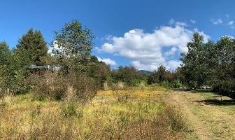 Foto de terreno habitacional en venta en rancho avándaro , valle de bravo, valle de bravo, méxico, 14383769 No. 01