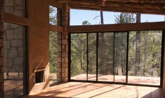 Foto de casa en venta en  , rancho laguna colorada de los lópez, durango, durango, 0 No. 01
