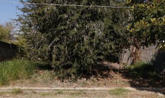 Foto de terreno habitacional en venta en  , real de mendoza, comala, colima, 12269589 No. 01