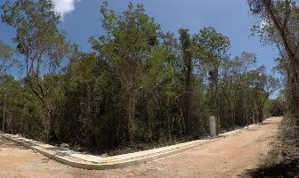 Foto de terreno habitacional en venta en  , region 15 kukulcan, tulum, quintana roo, 16113498 No. 01