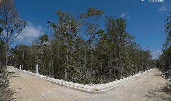 Foto de terreno habitacional en venta en region 15 manzana 112 , tulum centro, tulum, quintana roo, 14327796 No. 01