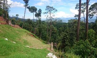 Foto de terreno habitacional en venta en rincón del bosque , avándaro, valle de bravo, méxico, 0 No. 01