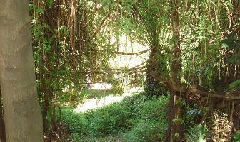 Foto de terreno habitacional en venta en rivera del atoyac , bosques de atoyac, puebla, puebla, 6440325 No. 01