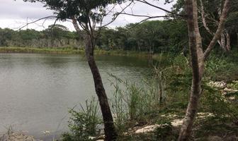 Foto de terreno habitacional en venta en ruta de los cenotes , puerto morelos, puerto morelos, quintana roo, 15284356 No. 01