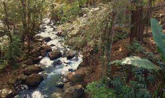 Foto de terreno habitacional en venta en ruta del bosque , avándaro, valle de bravo, méxico, 0 No. 01