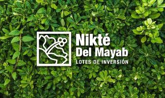 Foto de terreno habitacional en venta en  , sac-nicte, mérida, yucatán, 0 No. 01