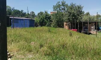Foto de terreno habitacional en venta en  , san andres huayapam, san andrés huayápam, oaxaca, 17884368 No. 01