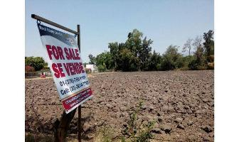 Foto de terreno habitacional en venta en  , san antonio tlayacapan, chapala, jalisco, 7975300 No. 01