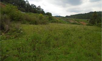 Foto de terreno habitacional en venta en san bartolo, amanalco s/n. , valle de bravo, valle de bravo, méxico, 14868798 No. 01