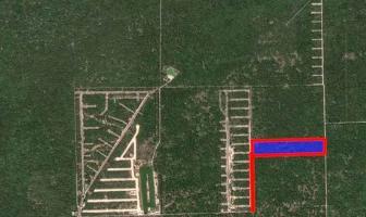 Foto de terreno habitacional en venta en  , san ignacio, progreso, yucatán, 14277865 No. 01