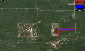 Foto de terreno habitacional en venta en  , san ignacio, progreso, yucatán, 0 No. 01