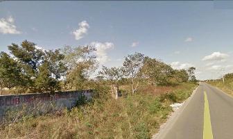 Foto de terreno habitacional en venta en  , san jose, mérida, yucatán, 12229493 No. 01