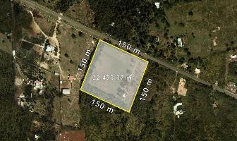 Foto de terreno habitacional en venta en  , san jose, mérida, yucatán, 12565326 No. 01