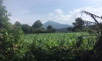 Foto de terreno habitacional en venta en san juan atezcapan , valle de bravo, valle de bravo, méxico, 10813520 No. 01