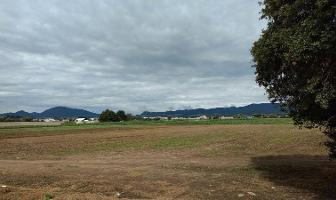 Foto de terreno habitacional en venta en  , san juan de las huertas, zinacantepec, méxico, 0 No. 01