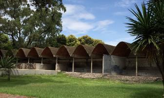 Foto de rancho en venta en  , san juan teotihuacan de arista, teotihuacán, méxico, 1173731 No. 04
