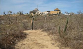 Foto de terreno habitacional en venta en  , san luciano, los cabos, baja california sur, 12327051 No. 01