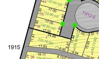 Foto de terreno habitacional en venta en  , san luis, san luis potosí, san luis potosí, 11277705 No. 01