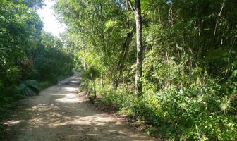 Foto de terreno habitacional en venta en san martín , akumal, tulum, quintana roo, 18348738 No. 01