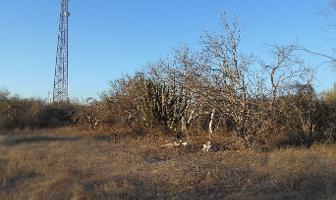 Foto de terreno habitacional en venta en  , san pedro, la paz, baja california sur, 3373529 No. 01