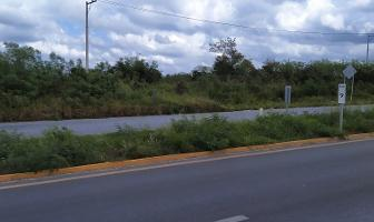 Foto de terreno habitacional en venta en  , san pedro noh pat, kanasín, yucatán, 11014296 No. 01