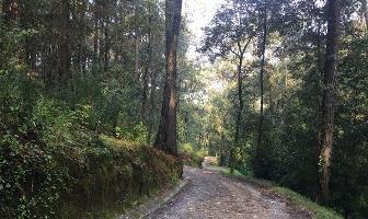 Foto de terreno habitacional en venta en  , san simón el alto, valle de bravo, méxico, 10670119 No. 01