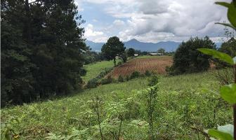 Foto de terreno habitacional en venta en  , san simón el alto, valle de bravo, méxico, 9304834 No. 01