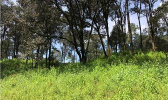 Foto de terreno habitacional en venta en  , san simón el alto, valle de bravo, méxico, 9304891 No. 02