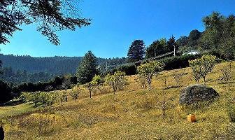Foto de terreno habitacional en venta en  , santa ana jilotzingo, jilotzingo, méxico, 0 No. 01