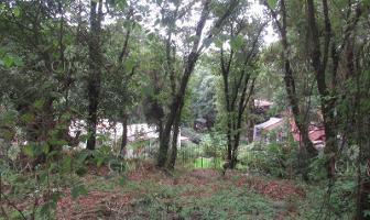 Foto de terreno habitacional en venta en  , santa maría ahuacatitlán, cuernavaca, morelos, 8636735 No. 01