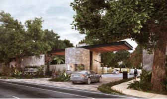 Foto de terreno habitacional en venta en  , santa gertrudis copo, mérida, yucatán, 13911302 No. 01