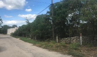 Foto de terreno habitacional en venta en  , santa gertrudis copo, mérida, yucatán, 14116293 No. 01