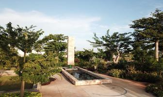 Foto de terreno habitacional en venta en  , santa gertrudis copo, mérida, yucatán, 17876731 No. 01