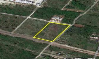 Foto de terreno habitacional en venta en  , santa gertrudis copo, mérida, yucatán, 18380731 No. 01