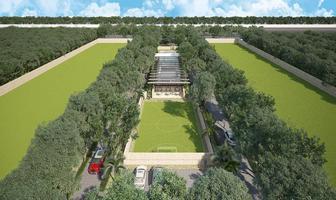 Foto de terreno habitacional en venta en santa gertrudis copo, merida, yucatan , santa gertrudis copo, mérida, yucatán, 0 No. 01