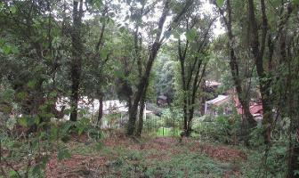 Foto de terreno habitacional en venta en  , santa maría ahuacatitlán, cuernavaca, morelos, 11777478 No. 01