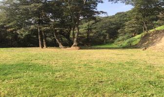 Foto de terreno habitacional en venta en  , santiago yancuitlalpan, huixquilucan, méxico, 16378360 No. 01