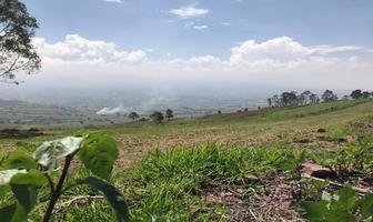 Foto de terreno habitacional en venta en s/c , la magdalena atlicpac, la paz, méxico, 15666361 No. 01
