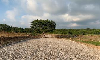 Foto de terreno habitacional en venta en s/c s/n , chivato, villa de álvarez, colima, 0 No. 01