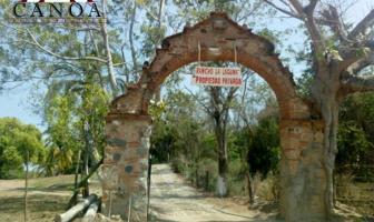 Foto de terreno habitacional en venta en s/e 01, mezcales, bahía de banderas, nayarit, 11452464 No. 01