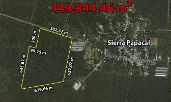 Foto de terreno habitacional en venta en  , sierra papacal, mérida, yucatán, 11751141 No. 01