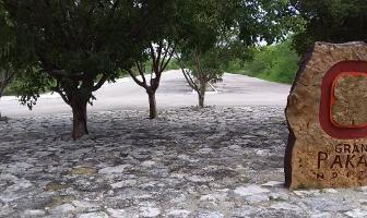 Foto de terreno habitacional en venta en  , sierra papacal, mérida, yucatán, 14222105 No. 01