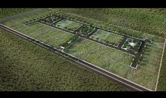 Foto de terreno habitacional en venta en  , sierra papacal, mérida, yucatán, 14268554 No. 01