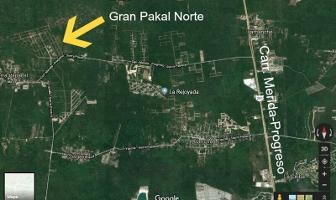 Foto de terreno habitacional en venta en  , sierra papacal, mérida, yucatán, 0 No. 01