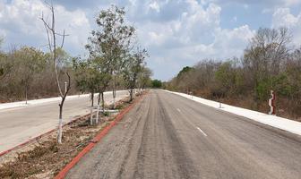 Foto de terreno habitacional en venta en  , sierra papacal, mérida, yucatán, 19165914 No. 01